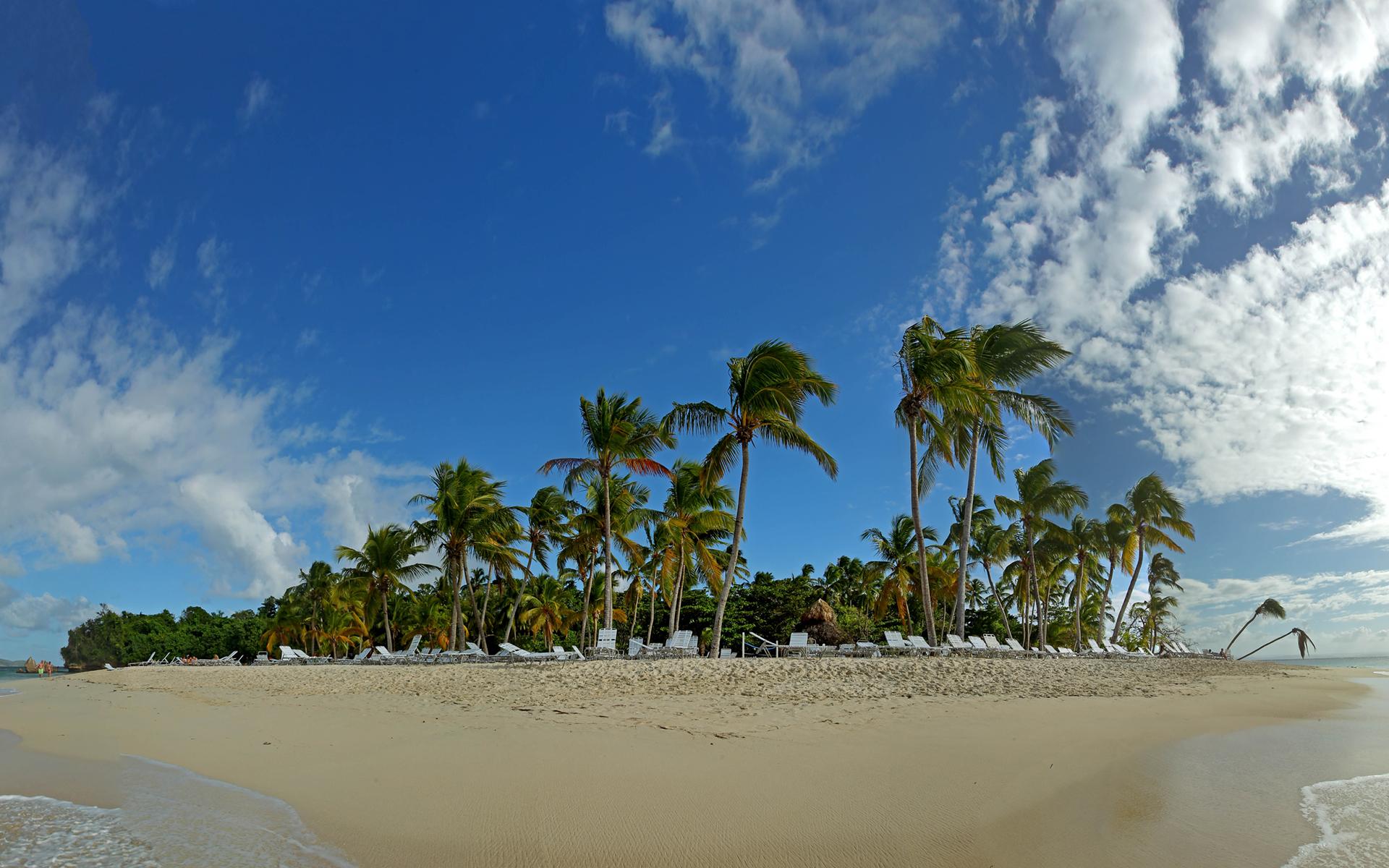 DOMINIKANSKA